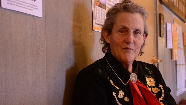 Lessons on manners from Temple Grandin