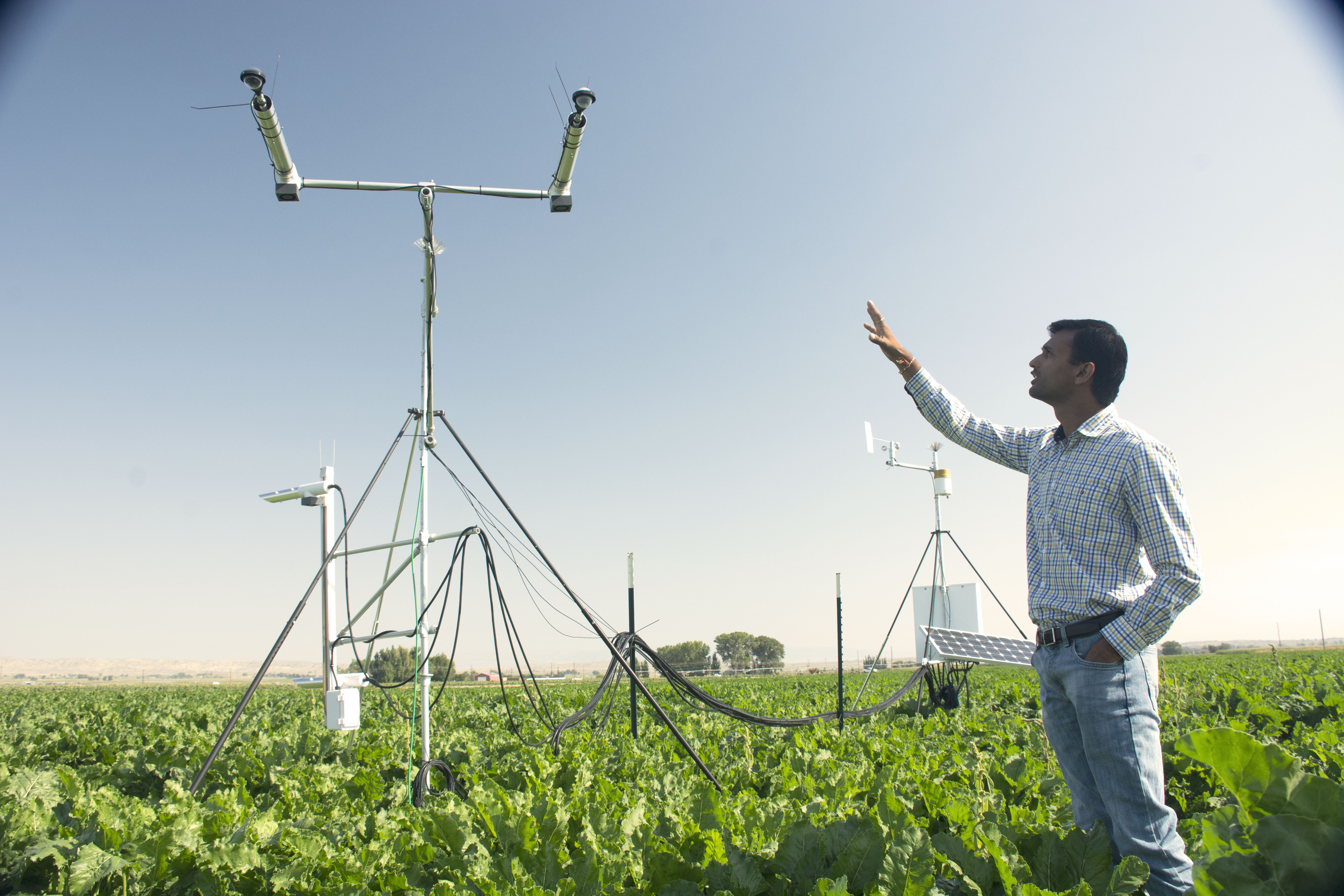 Research probes soil moisture sensor technology in Big Horn Basin