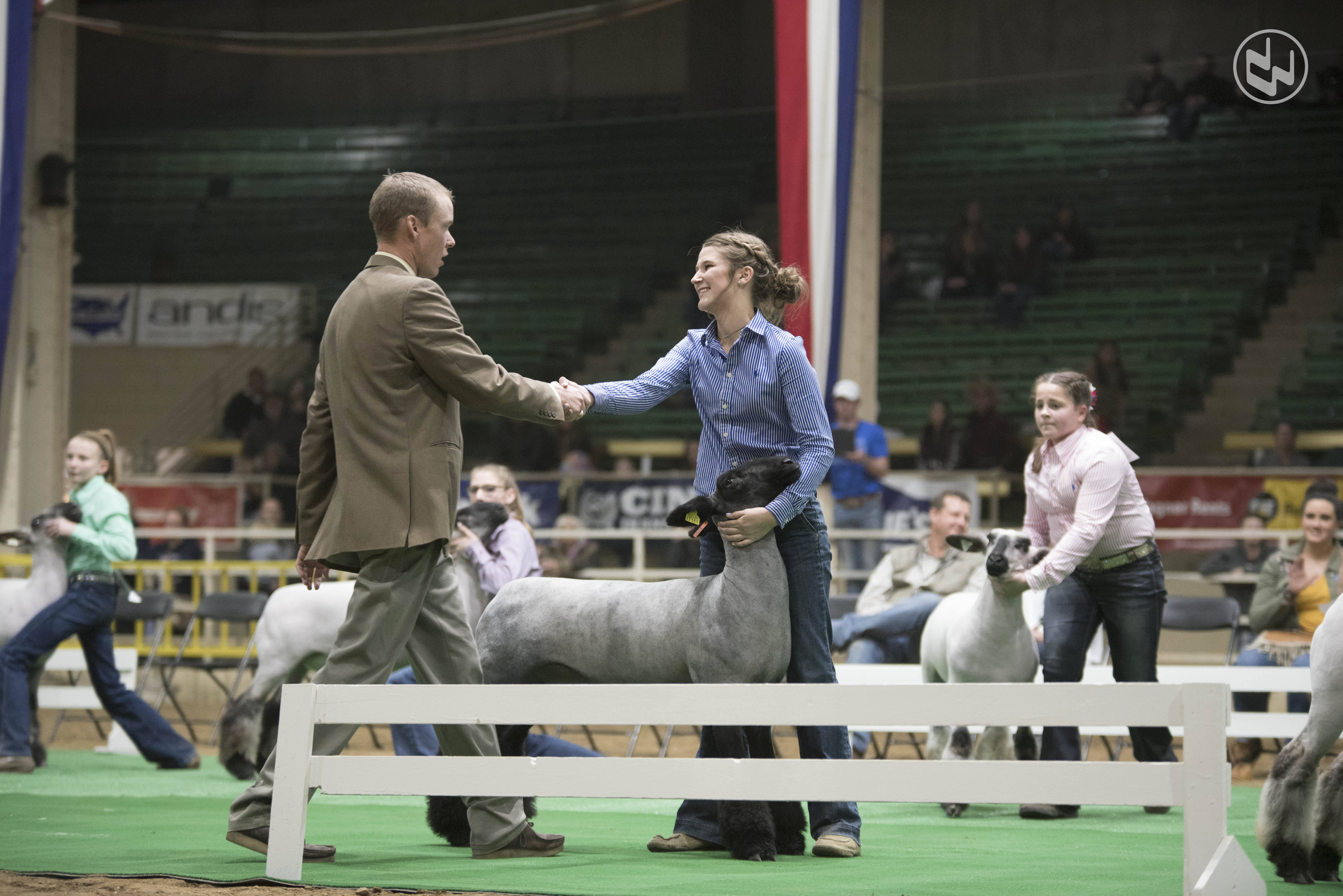 Caleb Boardman shakes hands with participant in sheep arena.