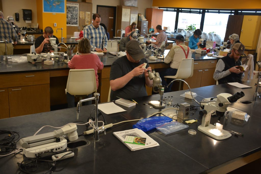 View across laboratory with participants at microscopes looking at specimens and in guidebooks.