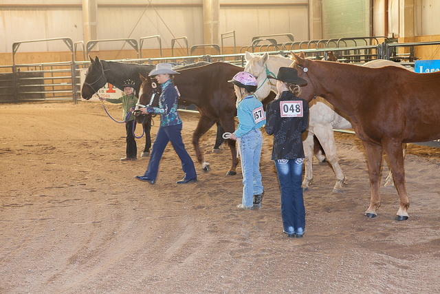 3 horse show participants with their horses.