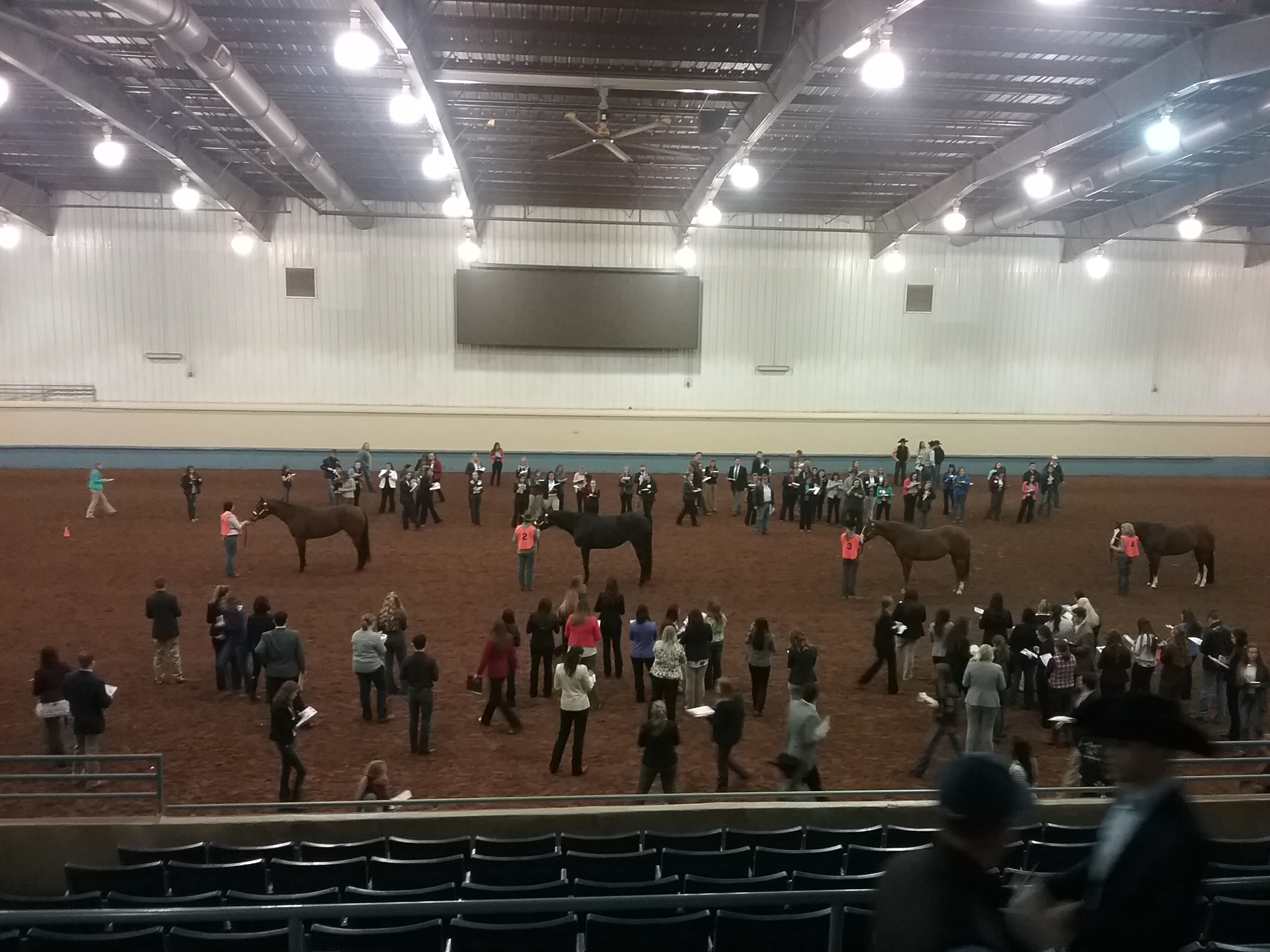 4 contestants in arena standing with their horses during judging.